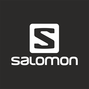 salomon-log 2.png
